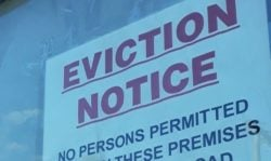 eviction ban, evicted